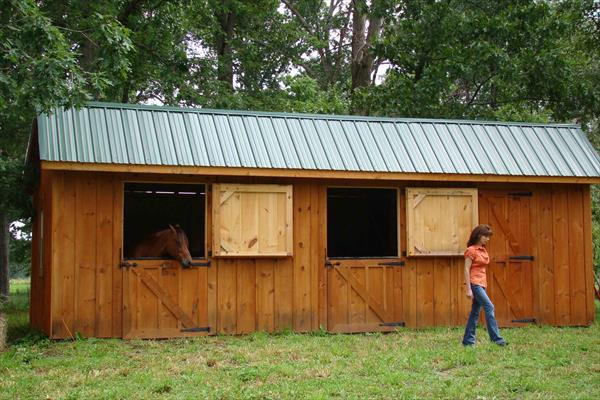 Shed Row horse barn with two stalls and a tack room